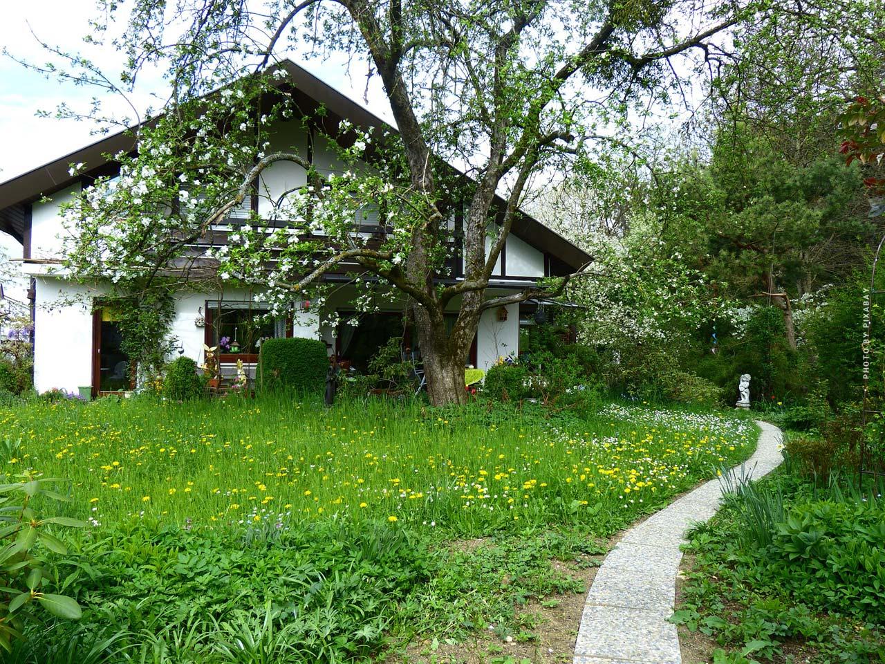 Hauskauf Böblingen: Hausbau oder sanieren?