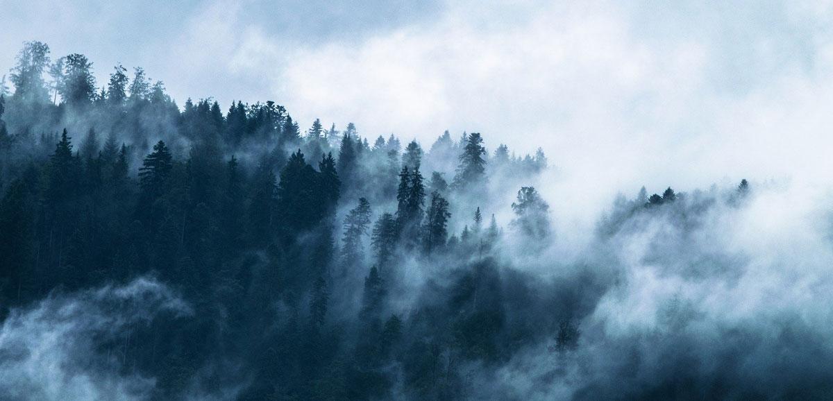 Wettertendenz für Oldenburg: Wind, Baustelle, Nebel und Gewitter